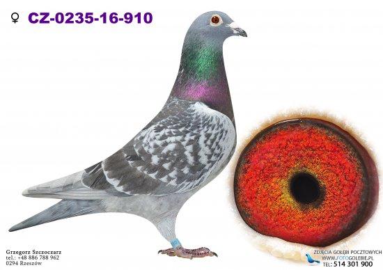 CZ-0235-16-910 - oryg. Bracia Rudalscy