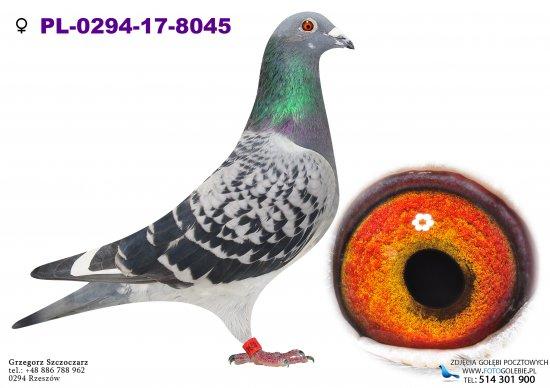 PL-0294-17-8045
