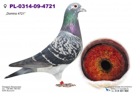 PL-0314-09-4721