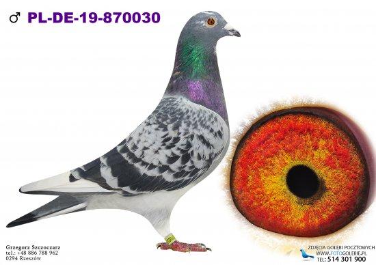 PL-DERBY-19-870030